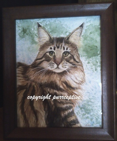maine coon print or notecards